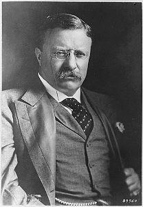 Teddy Roosevelt 2
