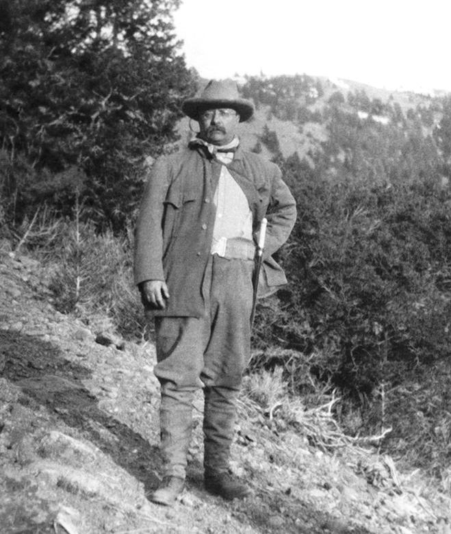 """theodore roosevelt an environmental teddy bear essay You don't have to be much of a trivia buff to know that the nation's 26th president, theodore """"teddy"""" roosevelt (1858-1919), was responsible for putting a name to the teddy bear phenomenon."""