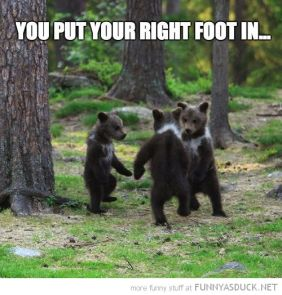 Dancing Bears Hokey Pokey