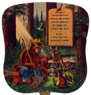 Smokey the Bear Rules for Fire Safety