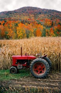 Cornfield with Tractor in Autumn