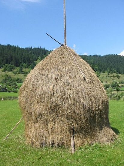 An Old-fashioned Hay Stack
