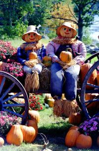 Mr and Mrs Scarecrow on the Pumpkin Harvest Wagon