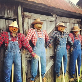 Scarecrow Morning Roll Call Before Heading Out to the Fields