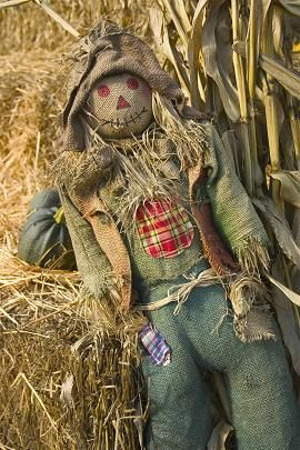 Scarecrow Leaning on the Hay Bales