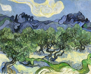 "Vincent van Gogh- ""The Alpilles with Olive Trees in the Foreground"""