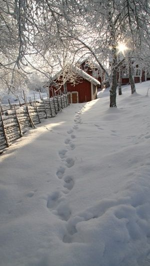Bootprints in the Snow-- found on vitamin-ha.com