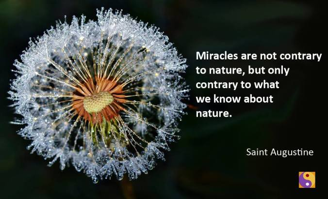 Quote- Miracles 2
