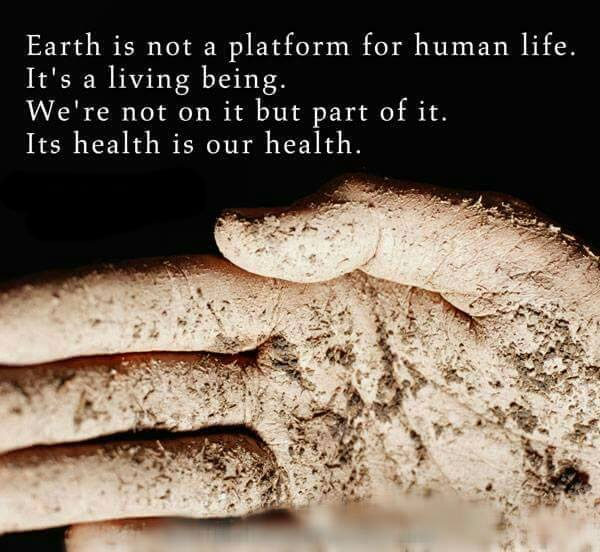 Quote- Ecology - Earth