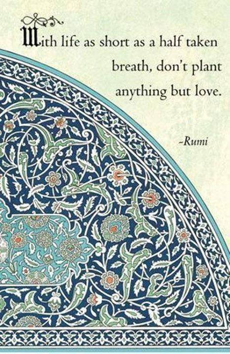Quote- Love 25