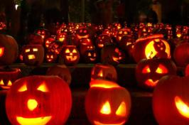 holiday-halloween-glowing-pumpkins-2