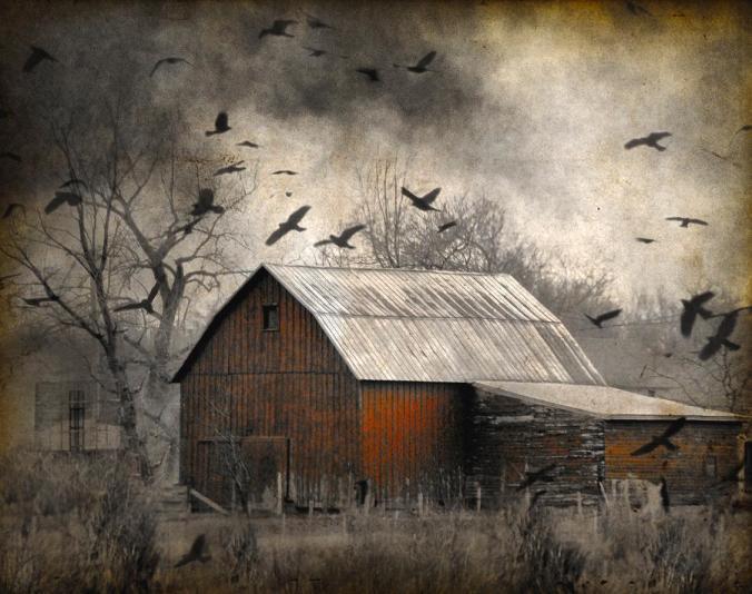 (Spooky Barn image via Literary Hoarders Blog, WordPress.com)