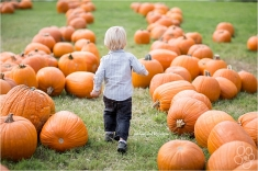 Fun in the Pumpkin Patch (via MeFitStudios dot com)