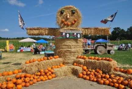 Welcome to the Pumpkin Patch! (via mommypoppins.com)
