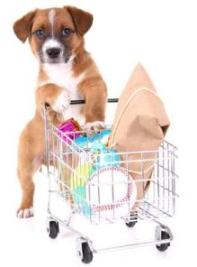 Dog Shopping via ABC News, Go.com