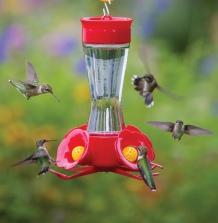 Four Port Hummingbird Feeder- via Duncraft.com
