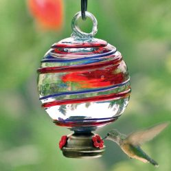 Globe Shaped Glass Hummingbird Feeder by Yard Envy