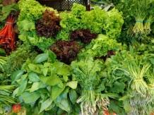 Greens at Market via Google uncredited