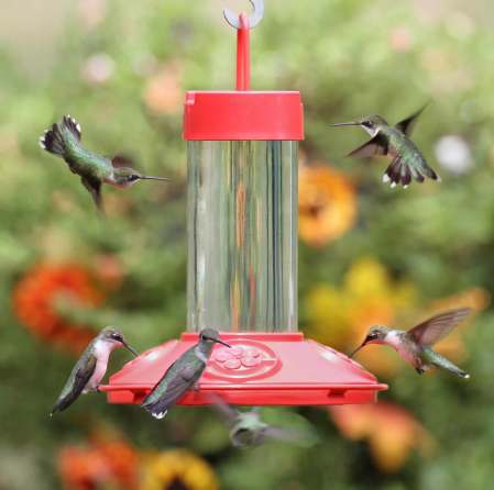 Medium Sized Hummingbird Feeder - via Duncraft.com
