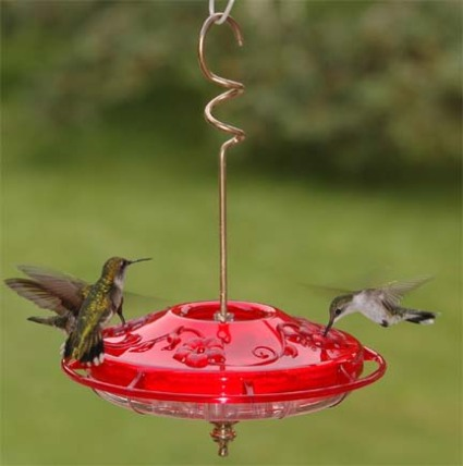 Small Dish Hummingbird Feeder - via BackyardChirper.com