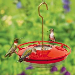 Small Dish Hummingbird Feeder - via Wild Birds Unlimited Nature Shop