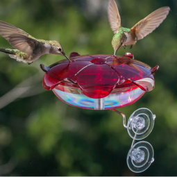 Window Suction-mount Hummingbird Feeder- via Duncraft.com